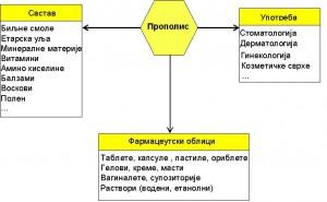 PropoSlika